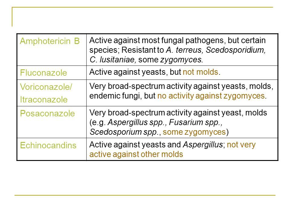 Amphotericin B Fluconazole Voriconazole/ Itraconazole Posaconazole