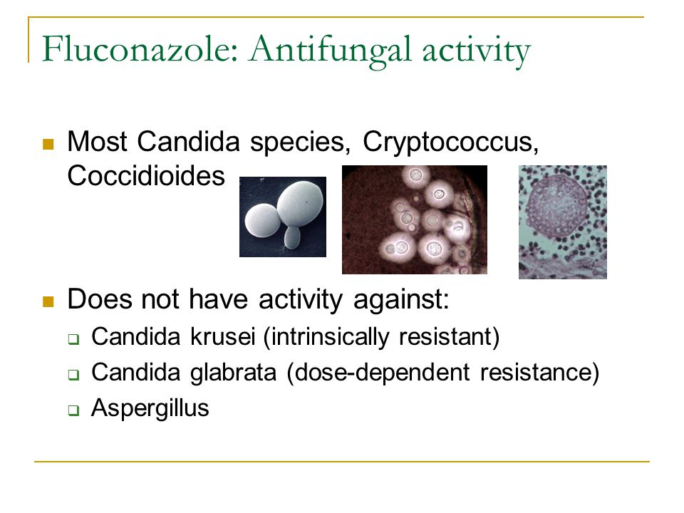 Fluconazole: Antifungal activity