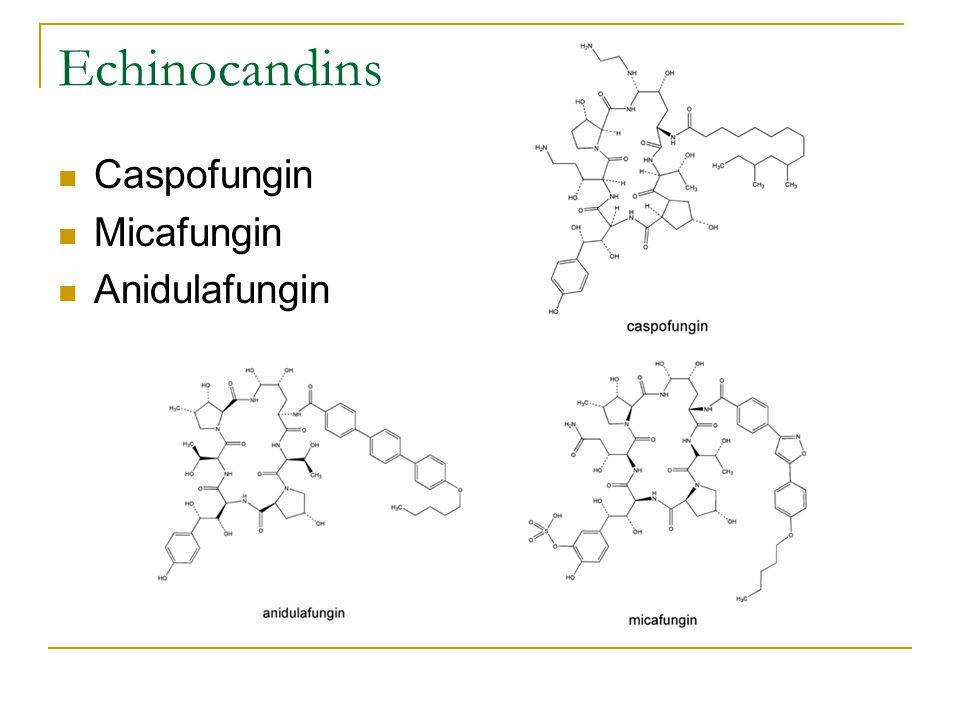 Echinocandins Caspofungin Micafungin Anidulafungin