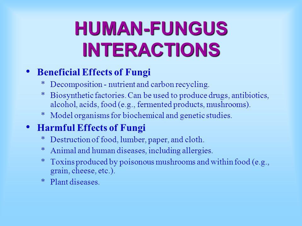 HUMAN-FUNGUS INTERACTIONS