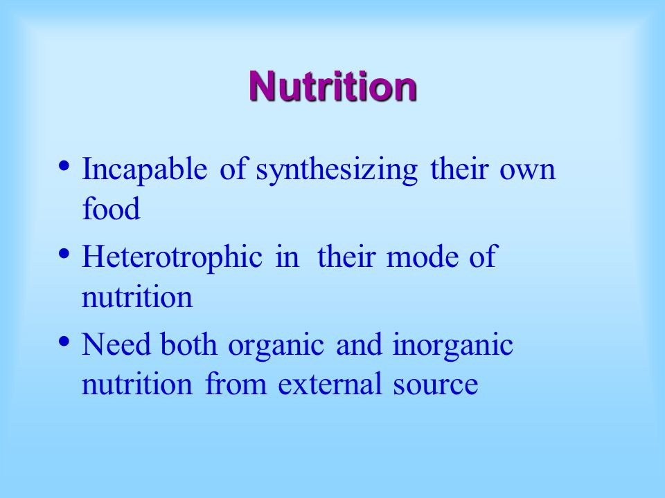 Nutrition Incapable of synthesizing their own food