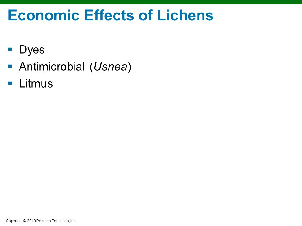 Economic Effects of Lichens