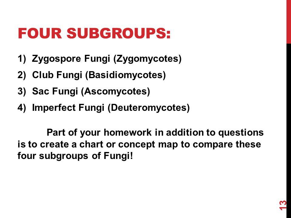 Four subgroups: Zygospore Fungi (Zygomycotes)