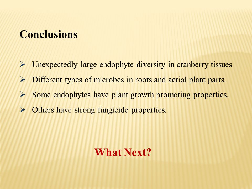 Conclusions Unexpectedly large endophyte diversity in cranberry tissues. Different types of microbes in roots and aerial plant parts.