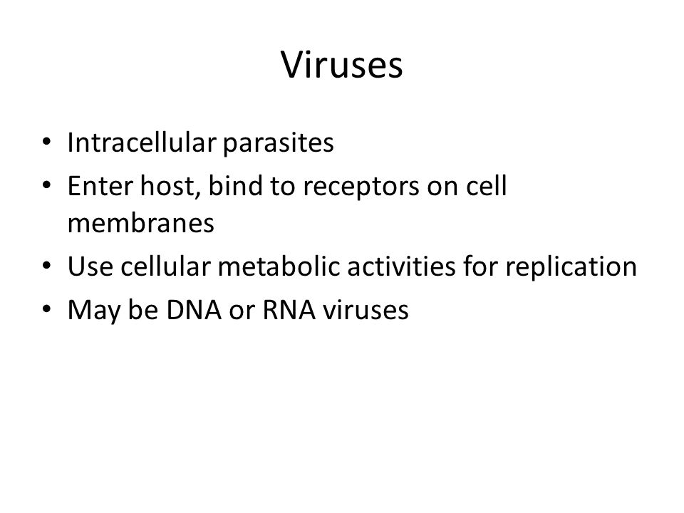 Viruses Intracellular parasites