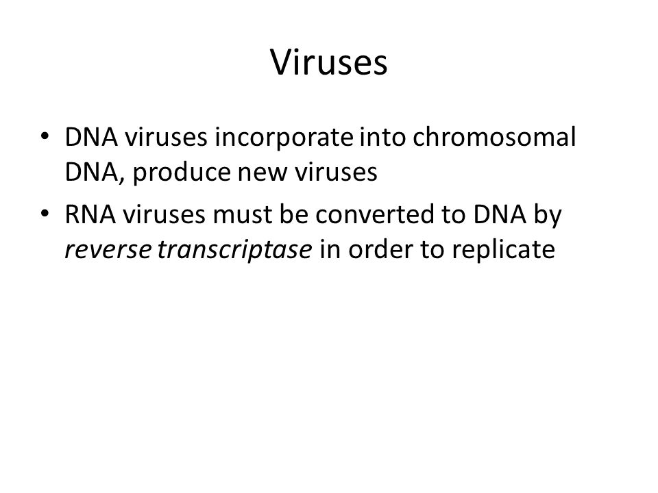 Viruses DNA viruses incorporate into chromosomal DNA, produce new viruses.