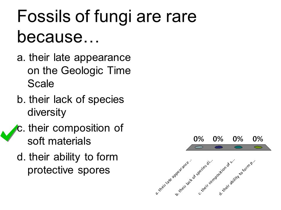 Fossils of fungi are rare because…