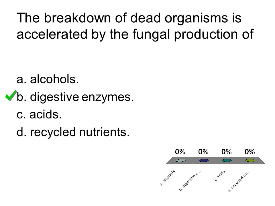 The breakdown of dead organisms is accelerated by the fungal production of