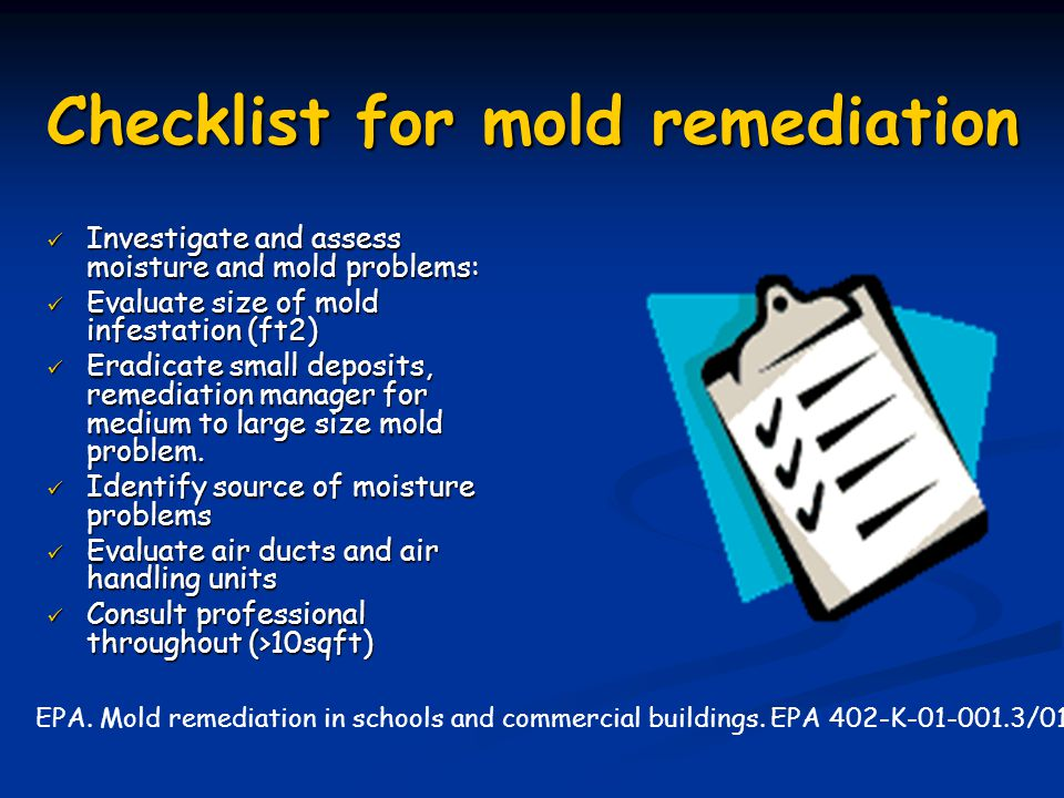 Checklist for mold remediation
