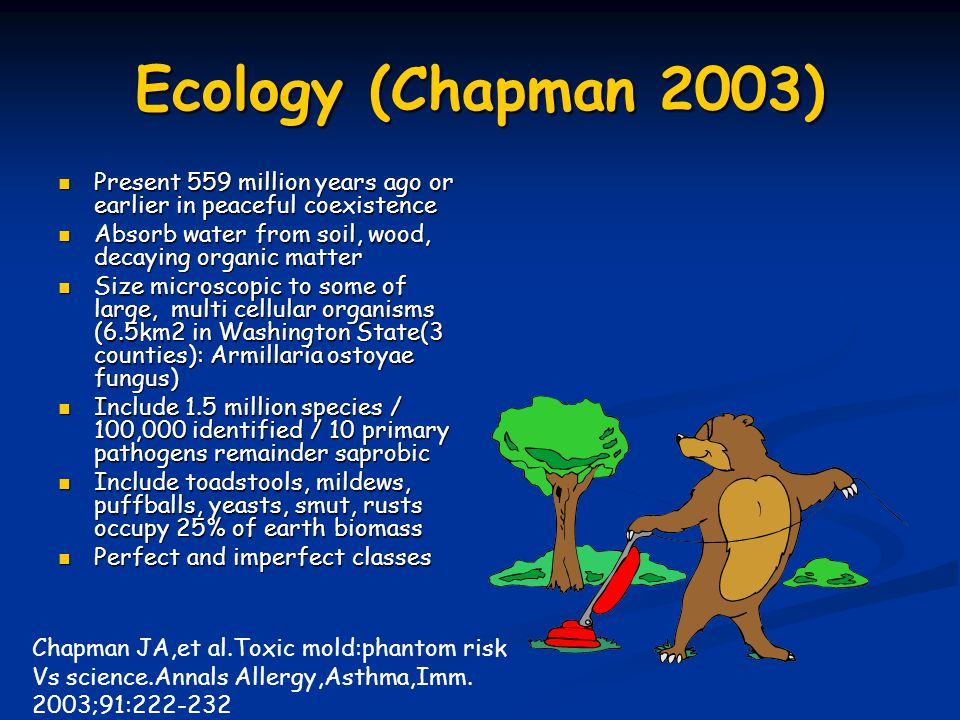 Ecology (Chapman 2003) Present 559 million years ago or earlier in peaceful coexistence. Absorb water from soil, wood, decaying organic matter.