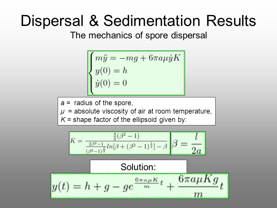 Dispersal & Sedimentation Results The mechanics of spore dispersal