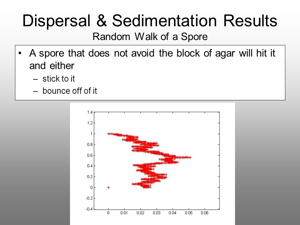 Dispersal & Sedimentation Results Random Walk of a Spore