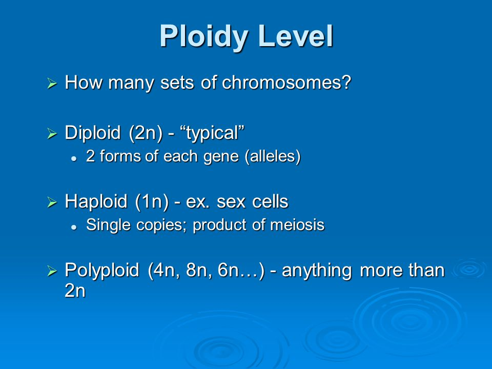 Ploidy Level How many sets of chromosomes Diploid (2n) - typical