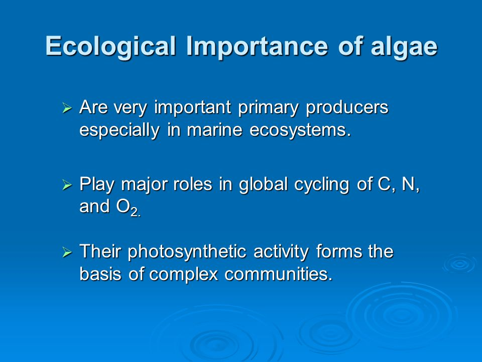 Ecological Importance of algae