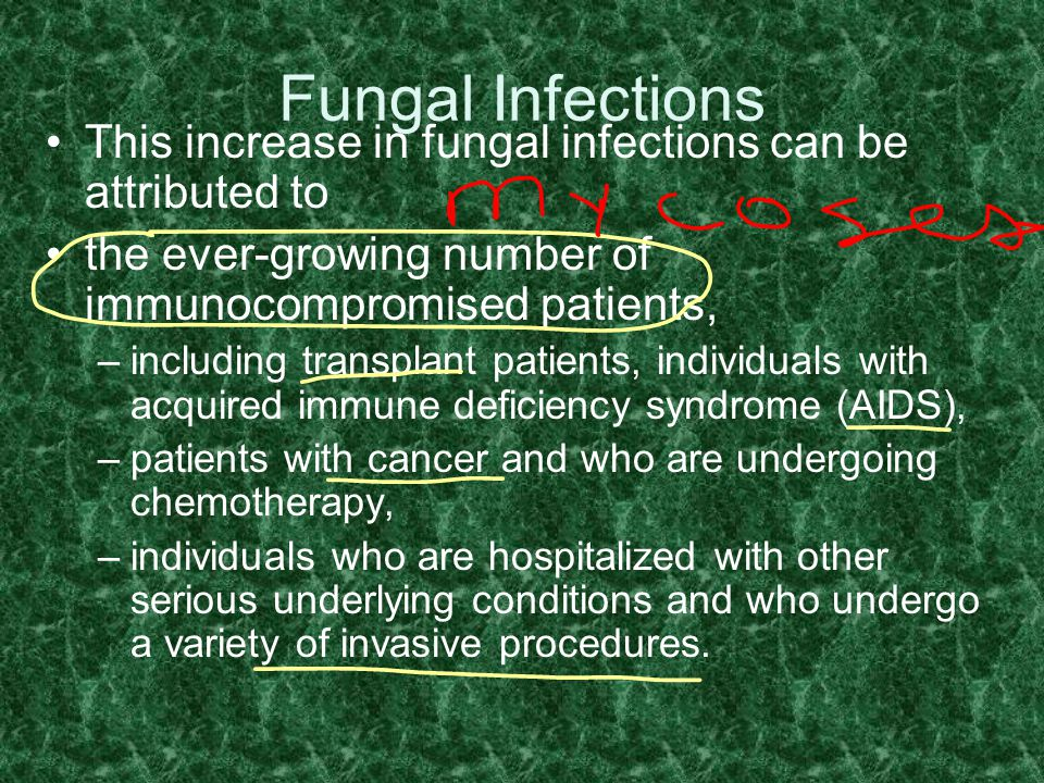 Fungal Infections This increase in fungal infections can be attributed to. the ever-growing number of immunocompromised patients,