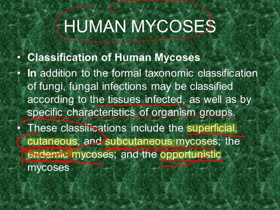 HUMAN MYCOSES Classification of Human Mycoses