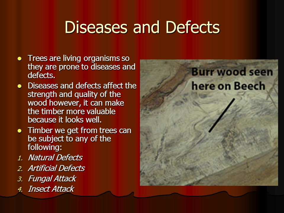 Diseases and Defects Trees are living organisms so they are prone to diseases and defects.