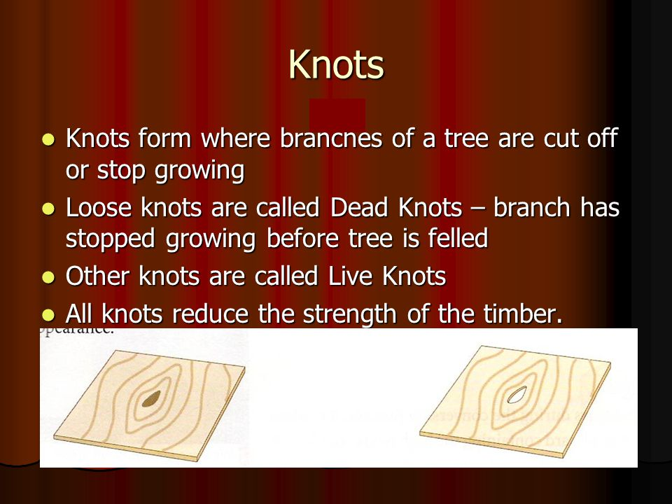 Knots Knots form where branches of a tree are cut off or stop growing