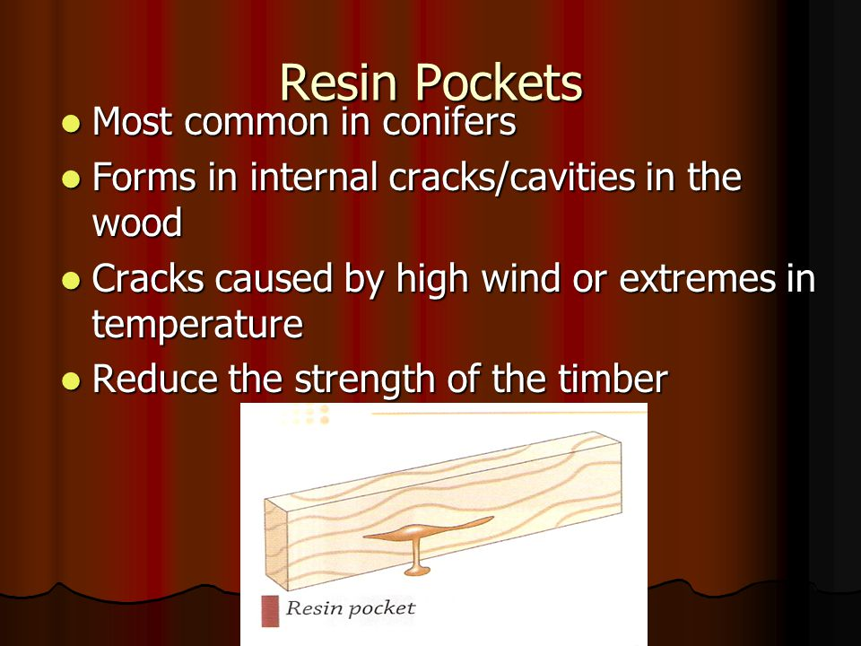 Resin Pockets Most common in conifers