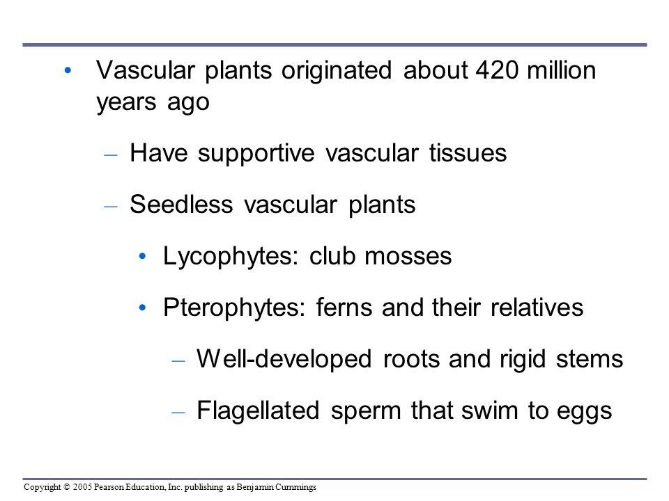 Vascular plants originated about 420 million years ago