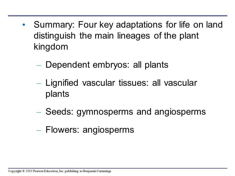 Summary: Four key adaptations for life on land distinguish the main lineages of the plant kingdom
