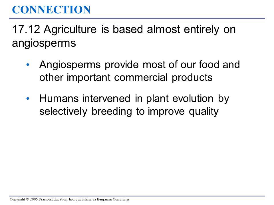 17.12 Agriculture is based almost entirely on angiosperms