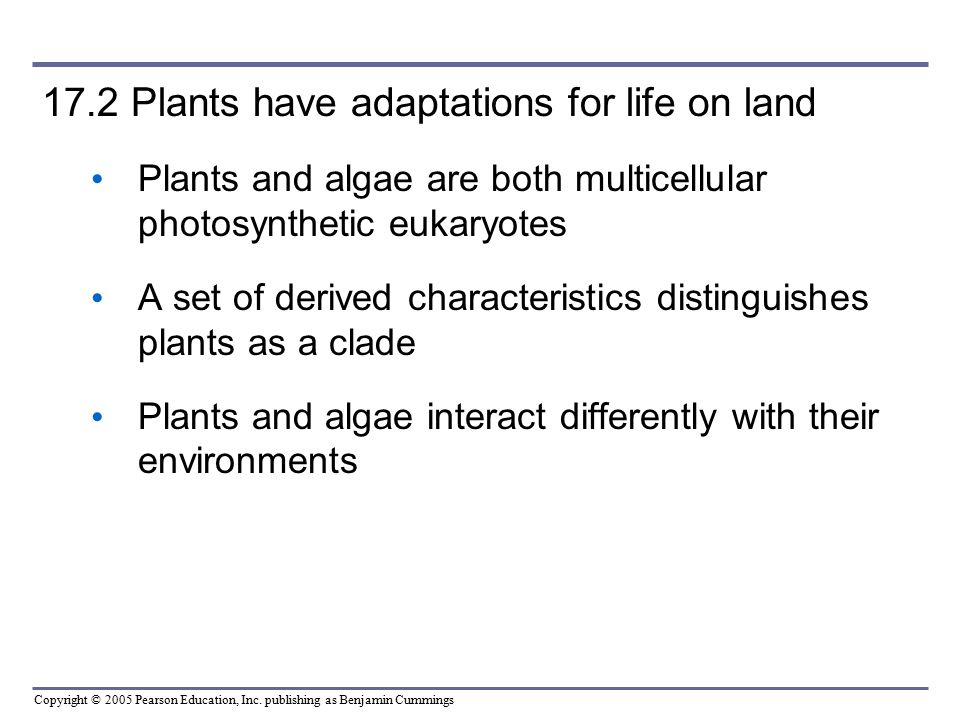 17.2 Plants have adaptations for life on land
