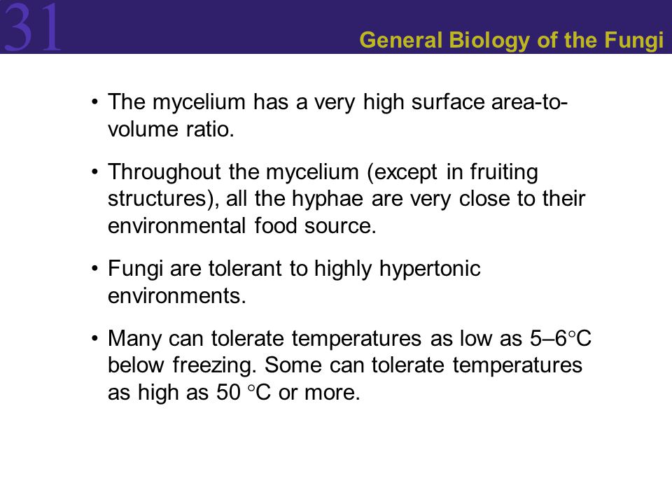 General Biology of the Fungi