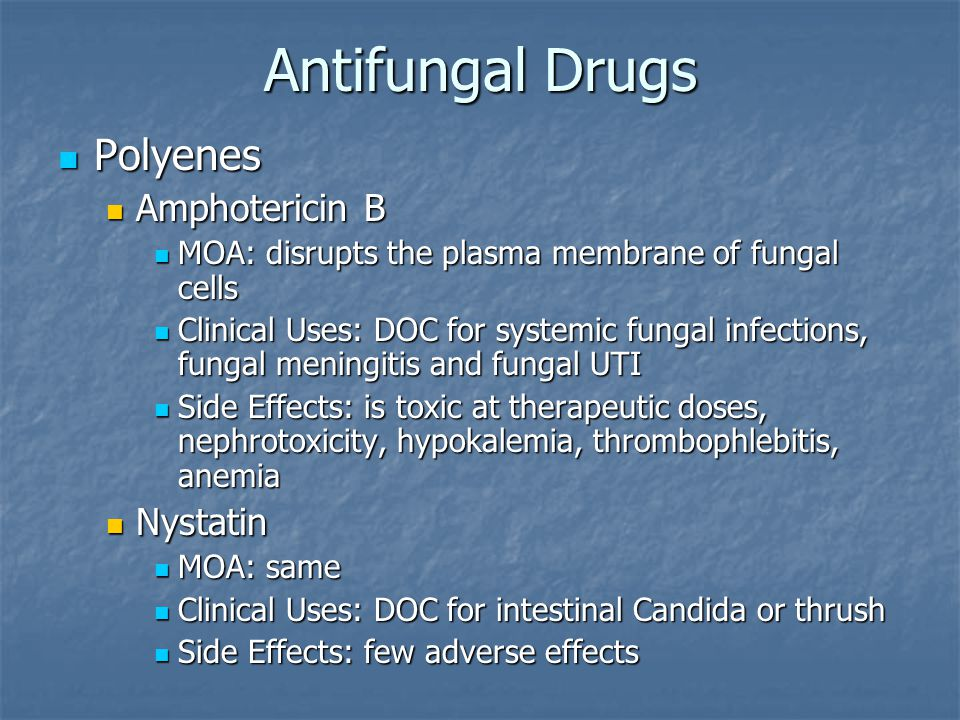 Antifungal Drugs Polyenes Amphotericin B Nystatin
