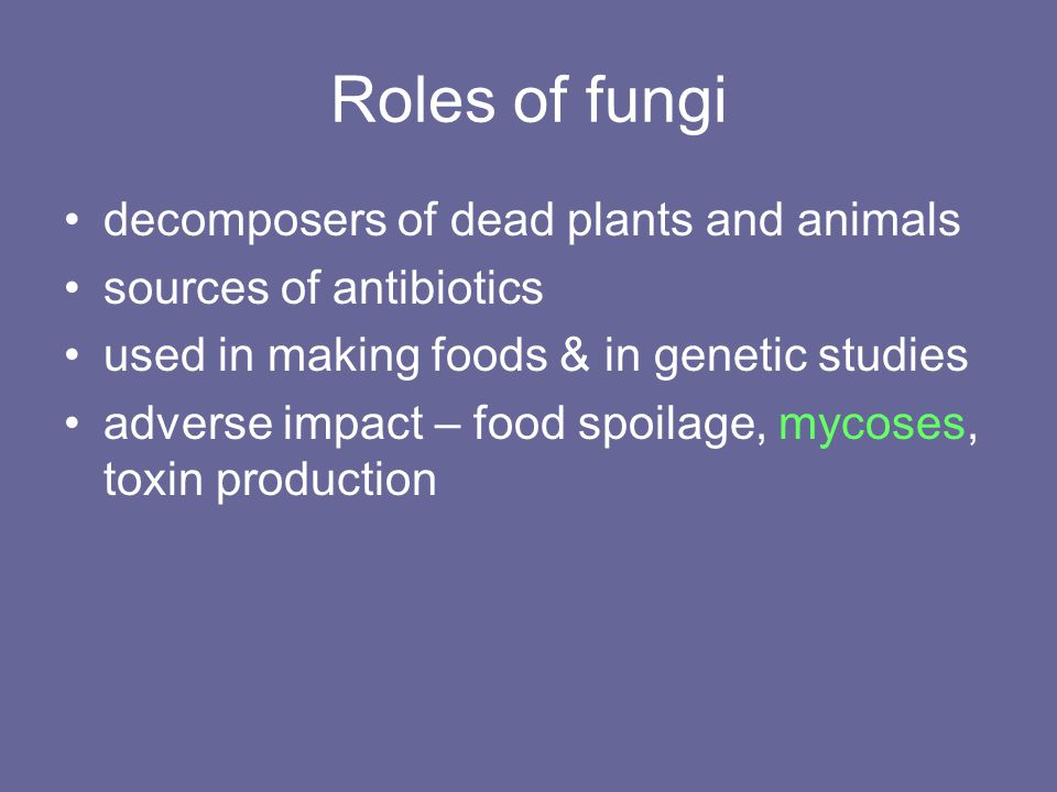 Roles of fungi decomposers of dead plants and animals