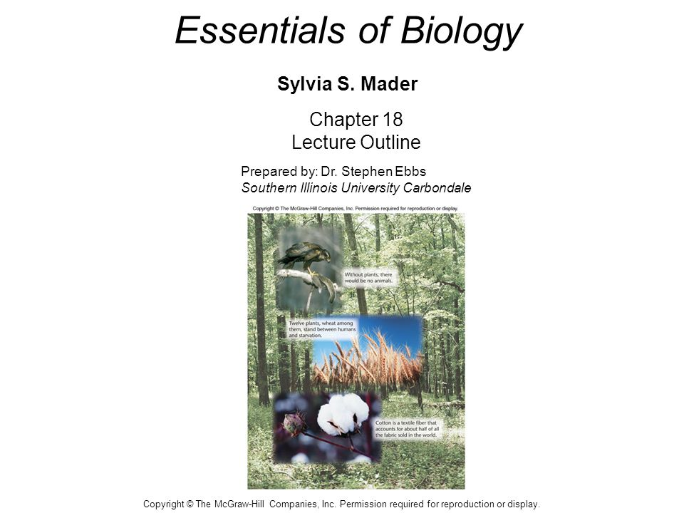Essentials of Biology Sylvia S. Mader