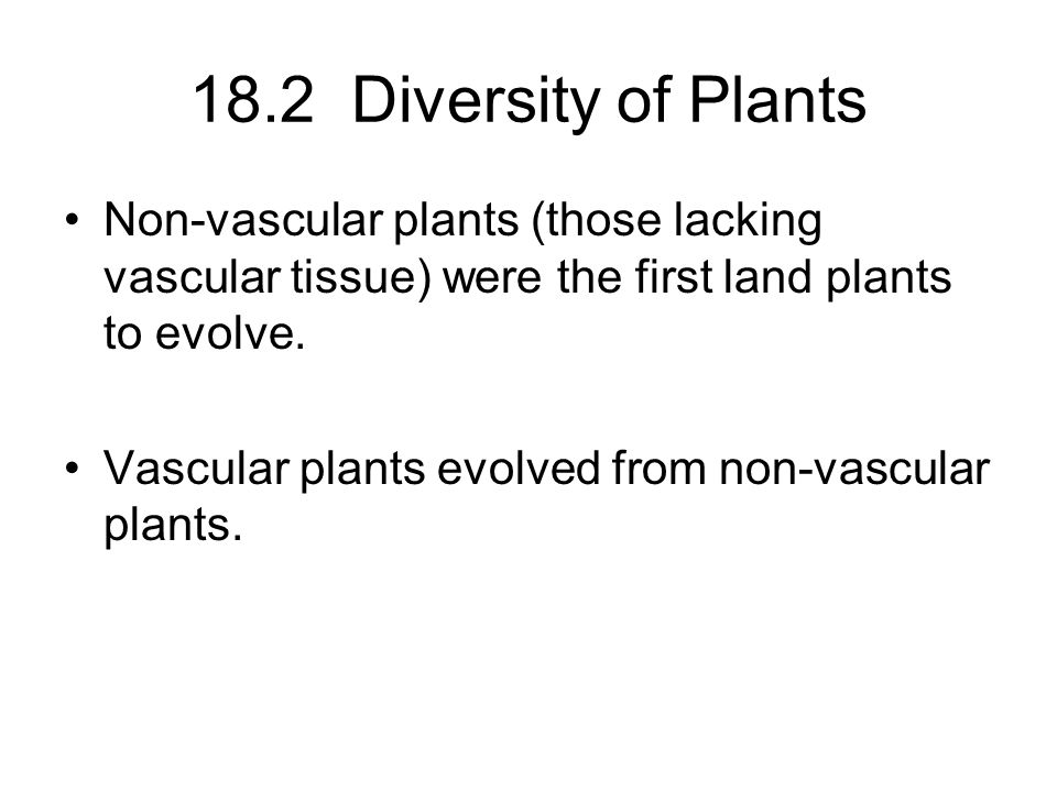 18.2 Diversity of Plants Non-vascular plants (those lacking vascular tissue) were the first land plants to evolve.