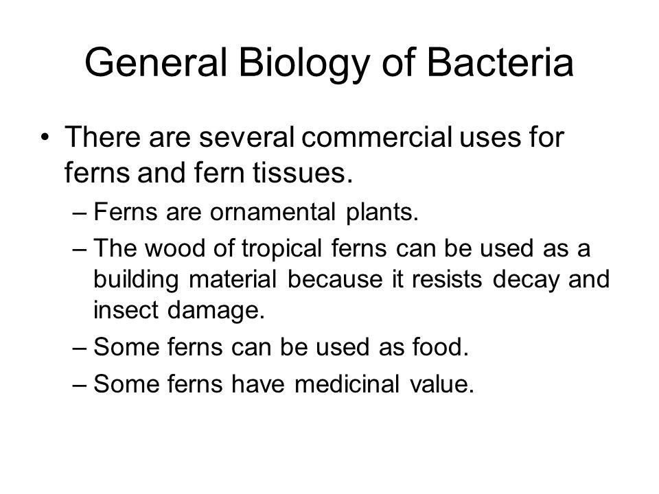 General Biology of Bacteria