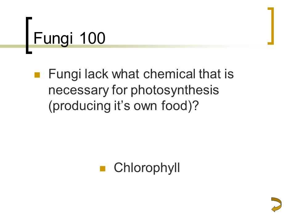 Fungi 100 Fungi lack what chemical that is necessary for photosynthesis (producing it's own food).