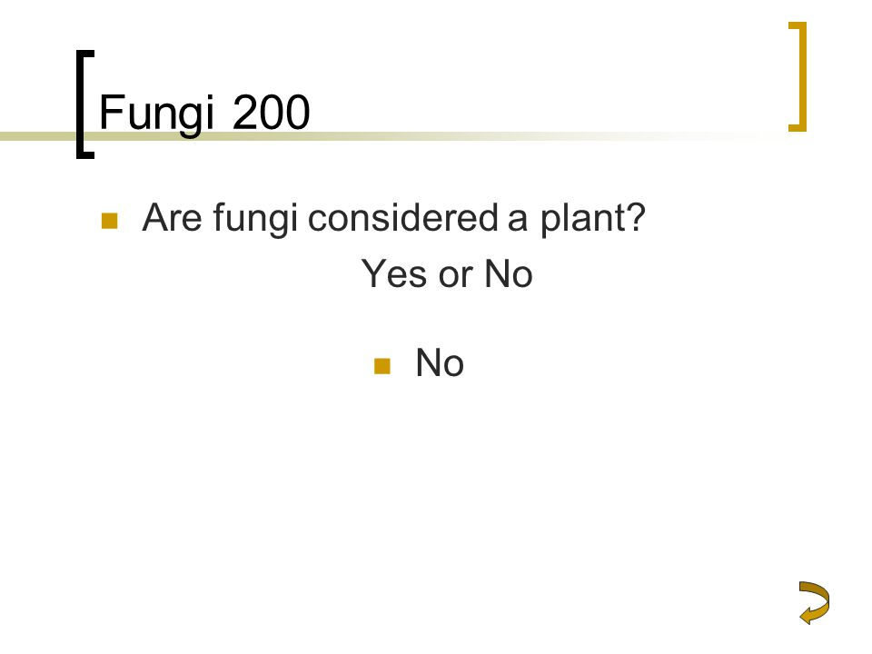 Fungi 200 Are fungi considered a plant Yes or No No