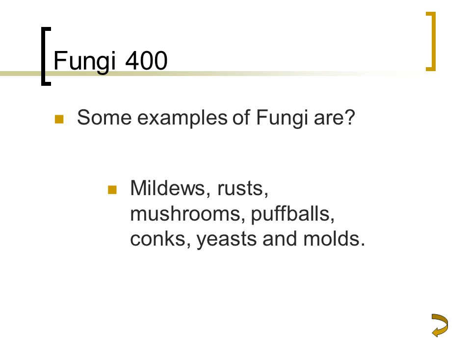 Fungi 400 Some examples of Fungi are