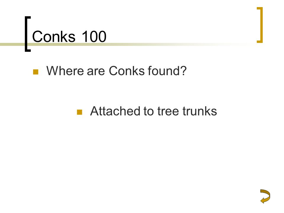 Conks 100 Where are Conks found Attached to tree trunks