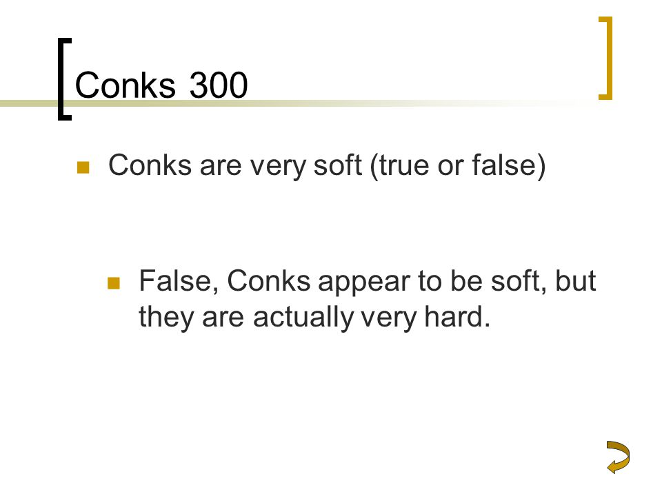 Conks 300 Conks are very soft (true or false)