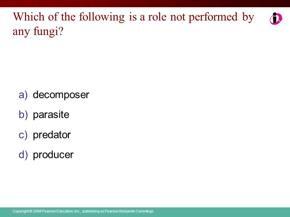 Which of the following is a role not performed by any fungi