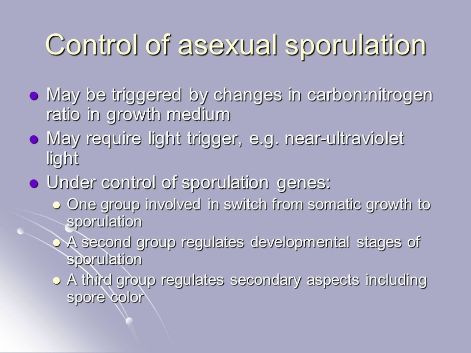Control of asexual sporulation