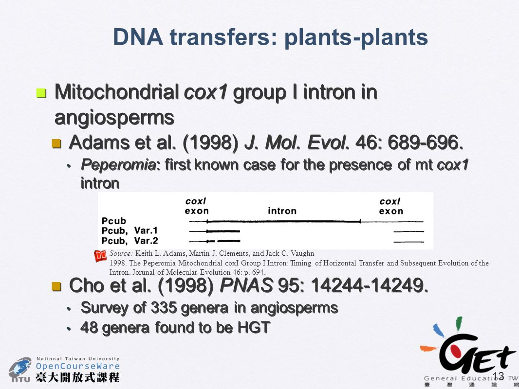 DNA transfers: plants-plants