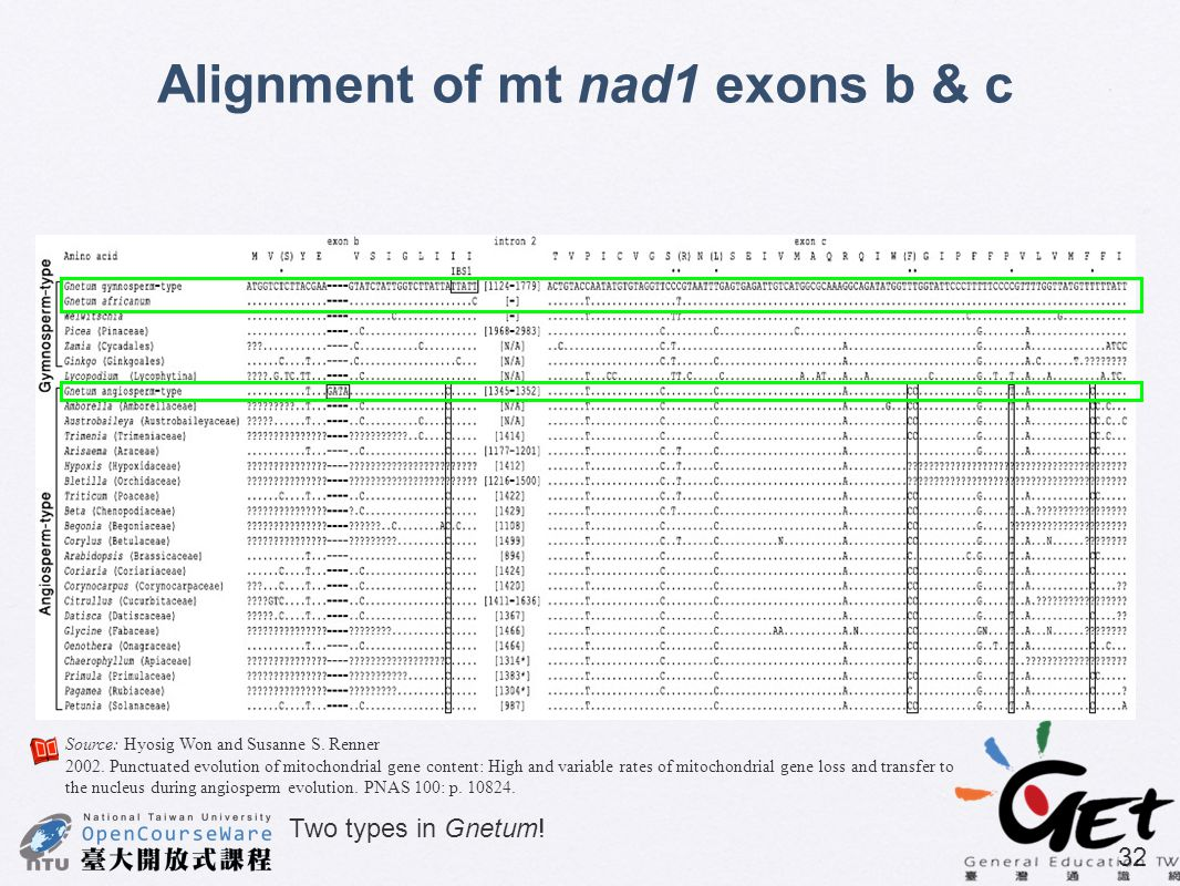 Alignment of mt nad1 exons b & c