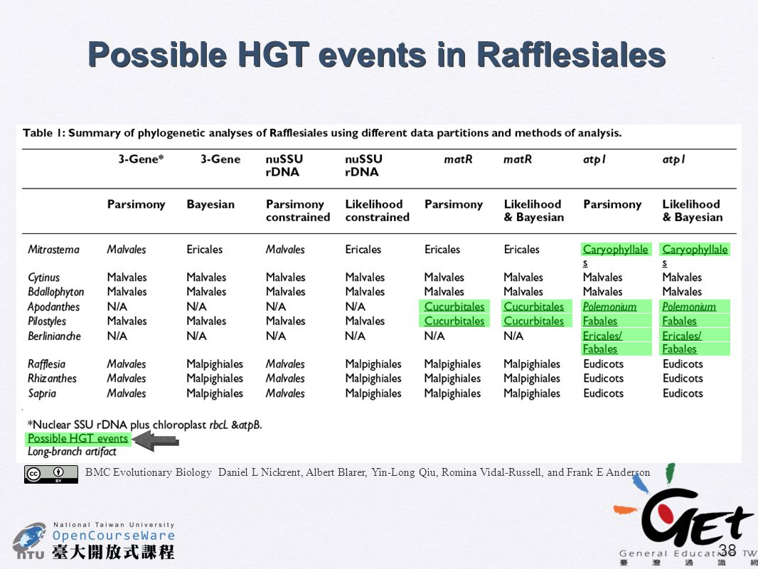 Possible HGT events in Rafflesiales