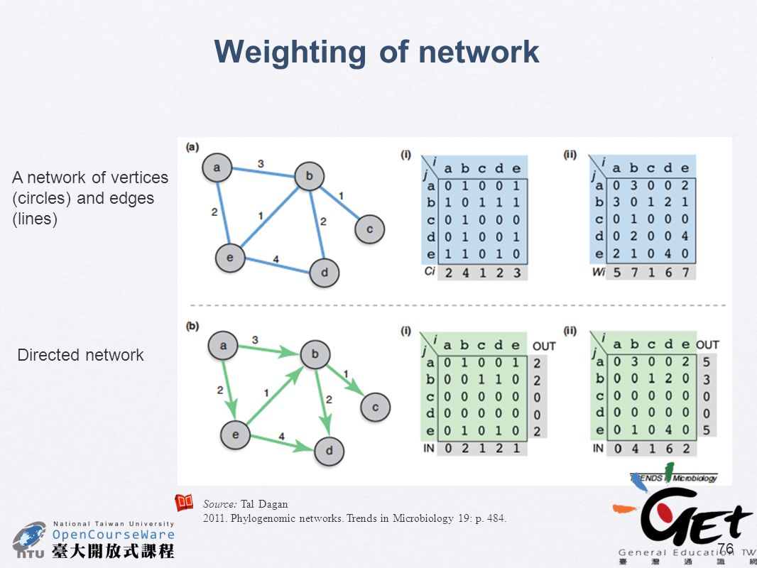 Weighting of network A network of vertices (circles) and edges (lines)