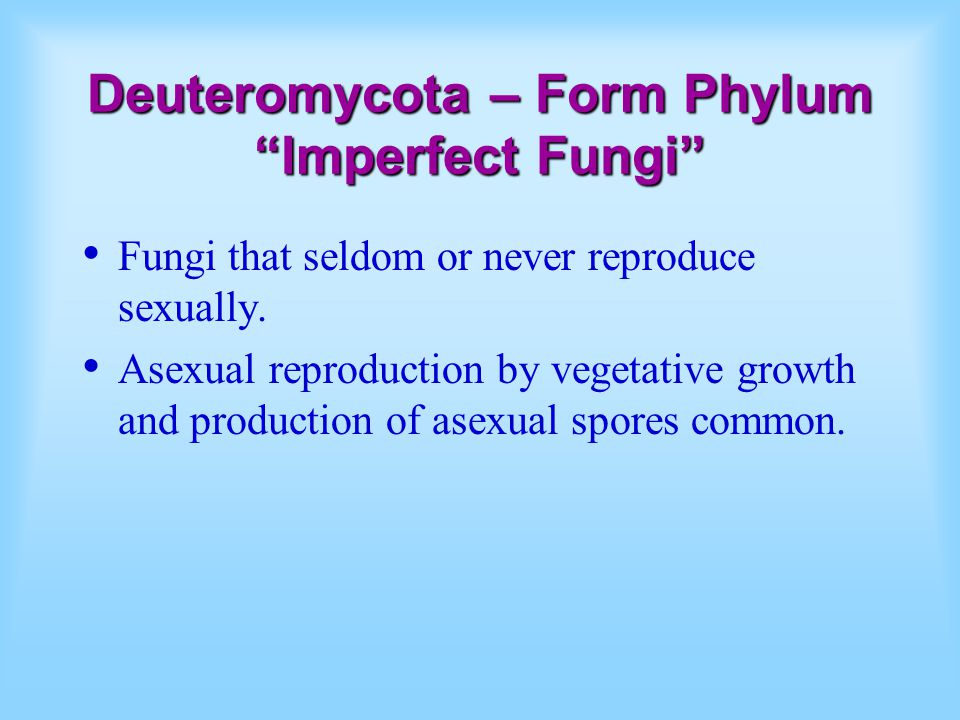 Deuteromycota – Form Phylum Imperfect Fungi