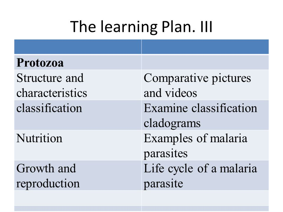 The learning Plan. III Protozoa Structure and characteristics