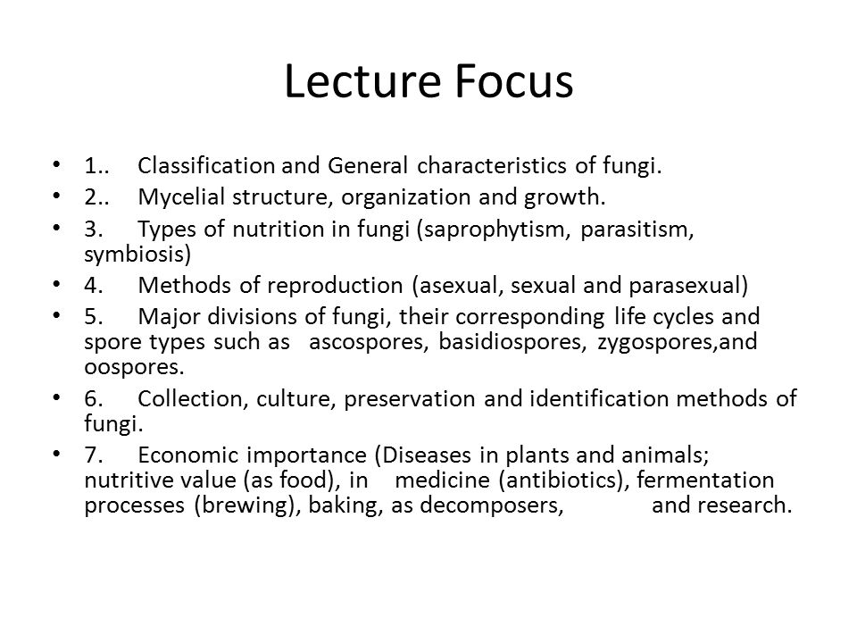 Lecture Focus 1.. Classification and General characteristics of fungi.