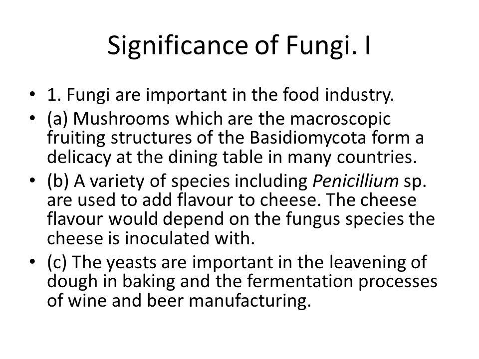 Significance of Fungi. I