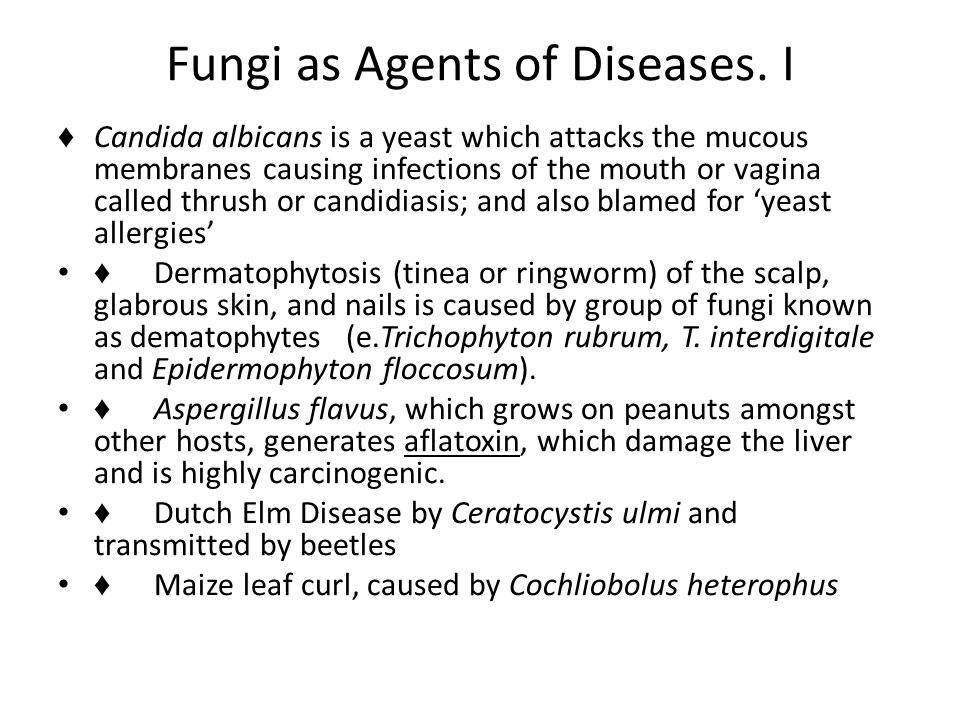Fungi as Agents of Diseases. I