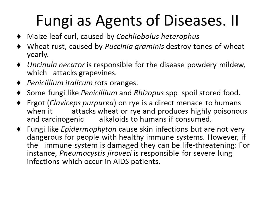 Fungi as Agents of Diseases. II